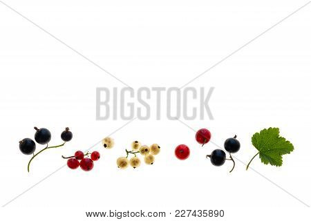 Collection Of Redcurrants, Blackcurrants And Whitecurrants On White Background