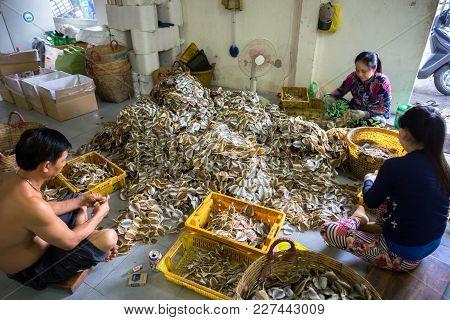Kien Giang, Vietnam - Dec 6, 2016: Yellowstripe Scad Fish Manual Production Line Mekong Delta, South