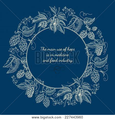Abstract Natural Sketch Blue Poster With Round Frame And Beer Hop Plants In Vintage Style Vector Ill