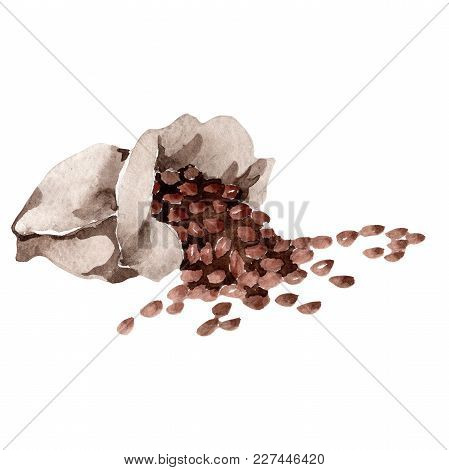 Coffee House Aromatic Food In A Watercolor Style Isolated. Full Name Of The Food: Coffee. Aquarelle