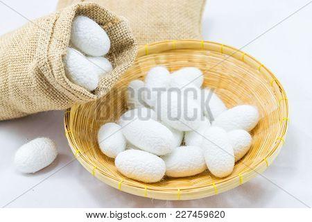 Silk Cocoon In Basket On White Background