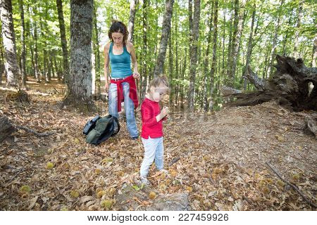 Little Girl With Chestnut In Hand In Forest In Autumn Near Mother