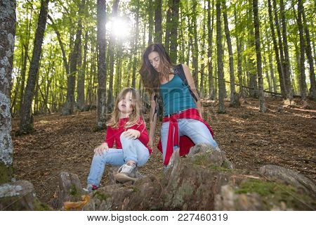Mother And Child Resting In Forest Of Chestnut Trees In Autumn