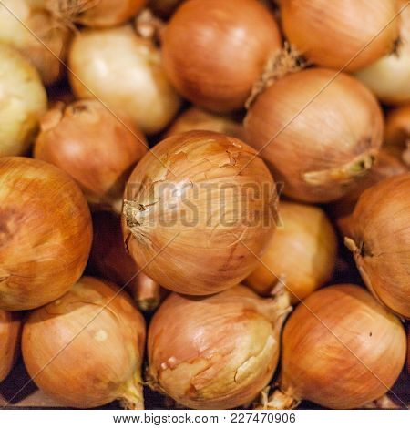 Fresh Onions. Colorful Display Of Yellow Onions In Market.  Onions Background  Close Up