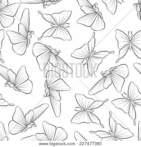 Butterflies Fly Coloring Book. Seamless Pattern Background With Insect Vector Illustration. Doodle N