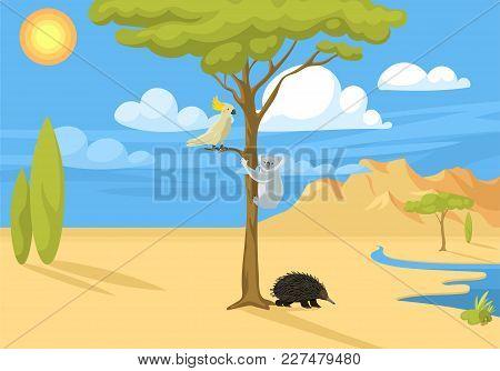 Australia Wild Background Landscape Animals Cartoon Popular Nature Flat Style Australian Native Fore