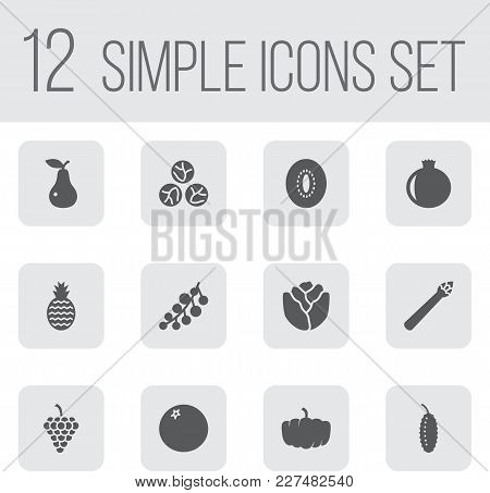 Set Of 12 Vitamin Icons Set. Collection Of Redcurrant, Pomegranate, Orange And Other Elements.
