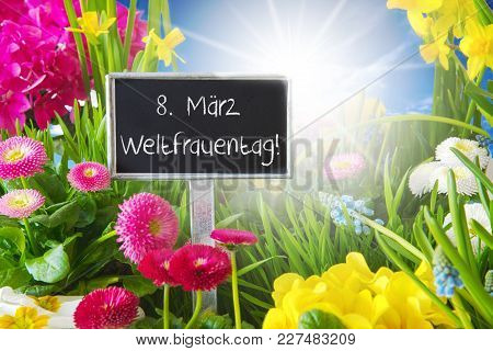 Sign With German Text Weltfrauentag Means International Womens Day. Sunny Spring Flower Meadow With