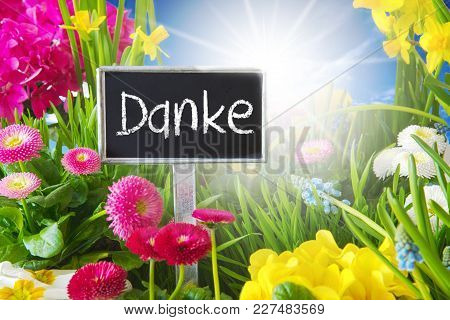 Sign With German Text Danke Means Thank You. Sunny Spring Flower Meadow With Daisy, Narcissus, Primr