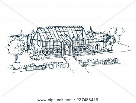 Sketch Of Beautiful Glasshouse Building Surrounded By Bushes And Trees Growing In Pots. Freehand Dra