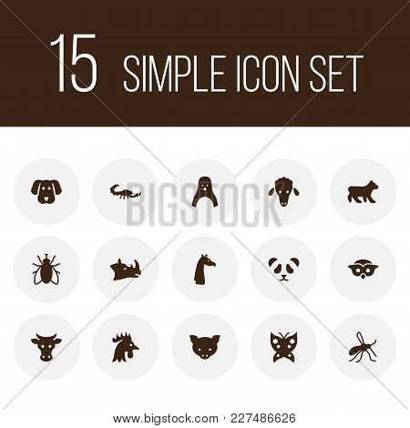 Set Of 15 Animal Icons Set. Collection Of Cock, Fly, Panda Elements.