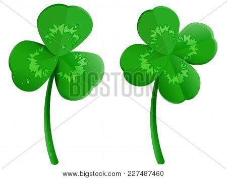 Set Green Shamrock Clover Leaf With Dew Drops. Lucky Four Leaf Symbol Of St. Patrick Day. Isolated O