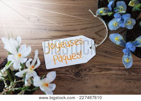 Sunny Label With French Text Joyeuses Paques Means Happy Easter. Spring Flowers Like Grape Hyacinth