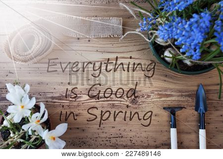English Text Everything Is Good In Spring. Sunny Spring Flowers Like Grape Hyacinth And Crocus. Gard