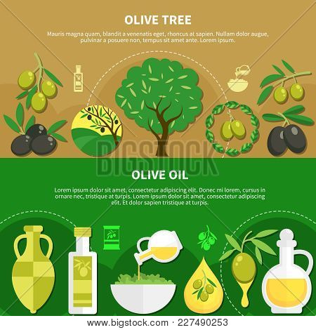 Set Of Horizontal Banners With Olive Oil In Various Packaging, Green Tree With Fruits Isolated Vecto