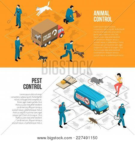 Stray Animals Pest Control Agency Services 2 Isometric Horizontal Infographic Elements Banners With