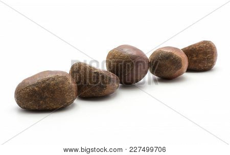 Five European Chestnuts Spanish Edible Isolated On White Background Raw Fresh Brown Nuts In Row