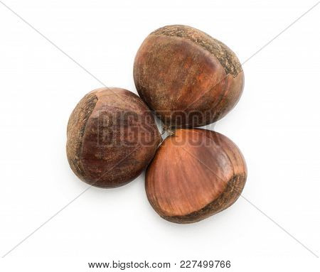 Three European Chestnuts Spanish Edible Top View Isolated On White Background Raw Fresh Brown Nuts