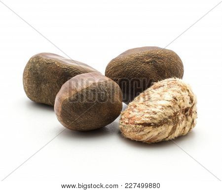 Three European Chestnuts One Spanish Edible Peeled Isolated On White Background Raw Fresh Brown Four
