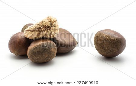 European Chestnuts One Spanish Edible Peeled Isolated On White Background Raw Fresh Brown Nuts