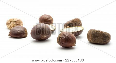 European Chestnuts Spanish Edible Set Isolated On White Background Raw Fresh Brown Nuts