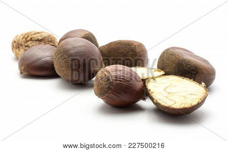European Chestnuts Spanish Edible Isolated On White Background Raw Fresh Brown Nuts Set