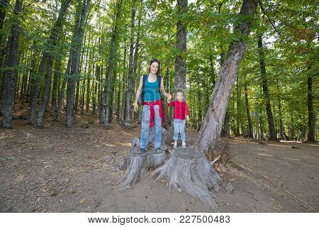 Mother And Child Posing On Cut Trunk In Forest Of Chestnut Trees In Autumn