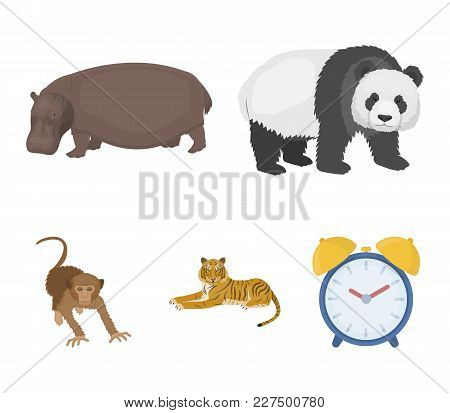 Bamboo Bear, Hippopotamus, Wild Animal Tiger, Monkey . Wild Animal Set Collection Icons In Cartoon S