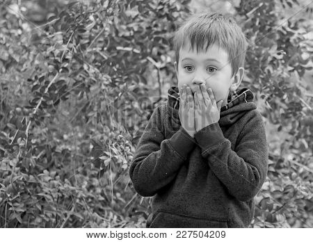 Little Scared Caucasian Boy Closing His Mouth With Hands, Surprised Kid. Stunned, Speechless, Back T