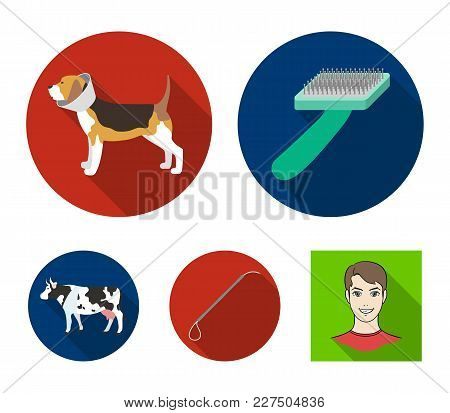 Dog, Cow, Cattle, Pet .vet Clinic Set Collection Icons In Flat Style Vector Symbol Stock Illustratio