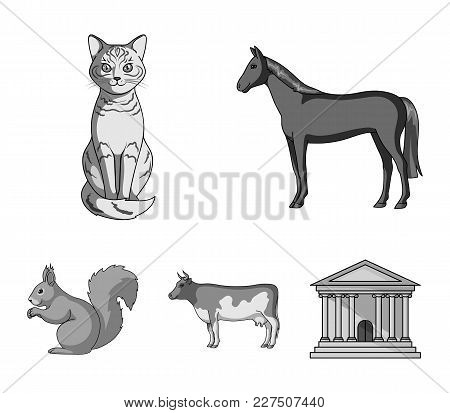 Horse, Cow, Cat, Squirrel And Other Kinds Of Animals.animals Set Collection Icons In Monochrome Styl