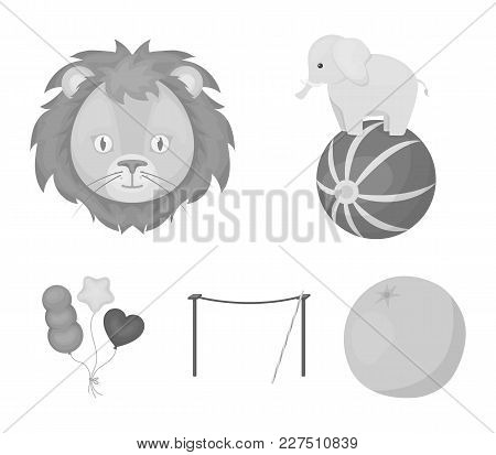 Elephant On The Ball, Circus Lion, Crossbeam, Balls.circus Set Collection Icons In Monochrome Style