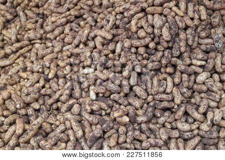 Fresh-gathered Harvest Of Fruits Of Peanut - A Peanut