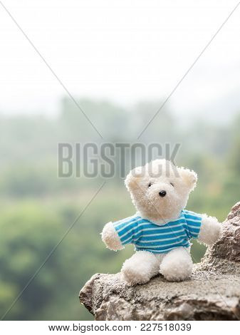 White Teddy Bear On Stone The Background Is A Forest And Mountains. Copy Space For Text. Valentines