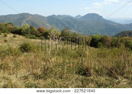 Amazing Landscape near Glozhene Monastery, Stara Planina Mountain  (Balkan Mountains), Lovech region, Bulgaria poster