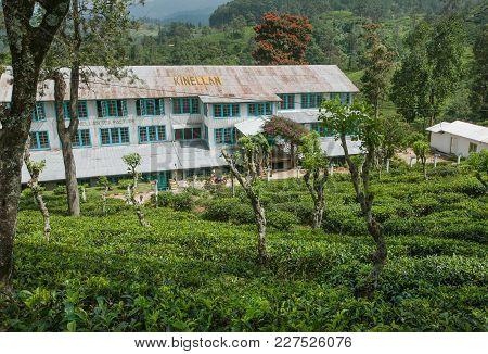 Ella, Sri Lanka - Jan 2, 2017: Big Building Of Tea Factory At Huge Green Tea Plantations At Rural La