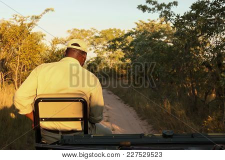 Game Reserve Tracker Looking For Animal Tracks From Front Of Vehicle