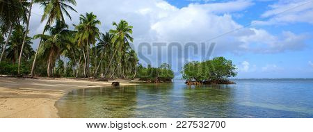 View Of The Tropical Beach With Palms Around. Holiday And Vacation Concept.caribbean Sea And Green P