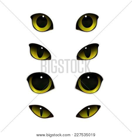 Cat Emotions Eyes Realistic Set Of Isolated Images With Open And Half-closed Feline Eyes Vector Illu