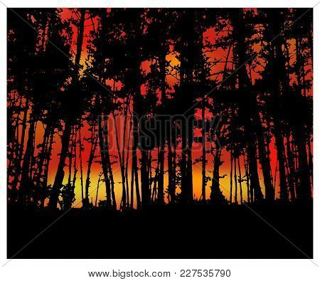 Woodland Eco Banner. Fire In Forest. Can Be Used As Poster, Badge, Wallpaper, Backdrop, Background.