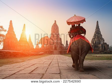 Tourists With An Elephant At Wat Chaiwatthanaram Temple In Ayutthaya Historical Park, A Unesco World