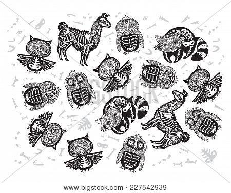Owl, Penguin, Llama And Raccoon Sugar Skull In Black And White Colors. Halloween Set Of Sugar Skull