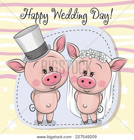 Greeting Card Cute Piggy Bride And Piggy Groom