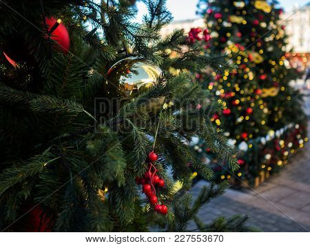 Christmas Picture Of Decorated Fir In Street In Evening.