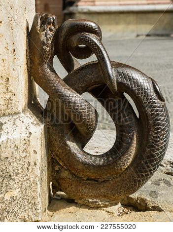 Coiled Bronze Snake Ornament Attached To One Of The Palaces Around The Piazza Del Campo In Siena, It