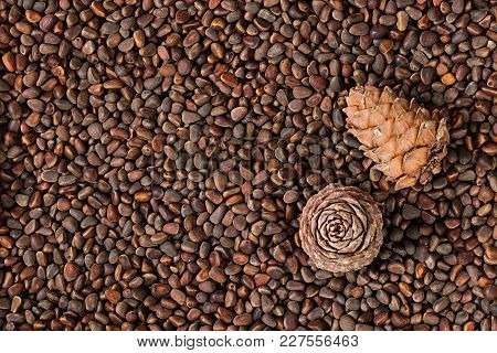 Brown Fresh Natural Whole Pine Nuts, Ceeds Of Siberian Pine And Two Pine Cones On Them Laying And St