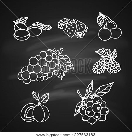 Fruit And Berry Sketch On Chalkboard. Strawberry, Raspberry, Grape, Cherry, Currant, Plum, Apricot F