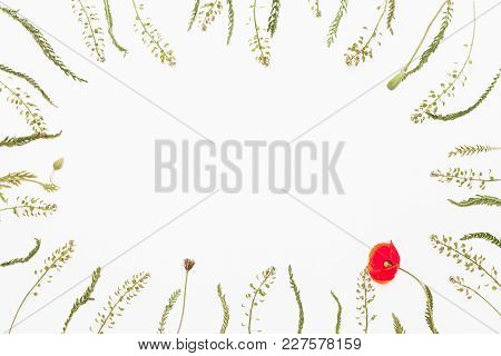 Floral Frame From Field Flowers On White Background