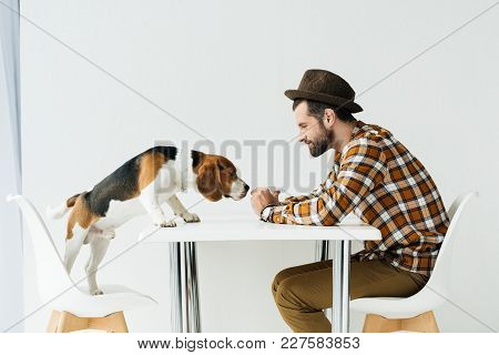 Side View Of Dog Sniffing Food In Man Hand