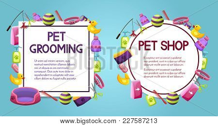 Pet Shop Sale Square And Round Vector Banner With Shadow, Poster Design On Colorful Background With